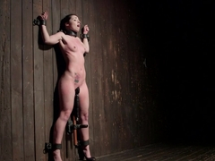 Shackled Submissive