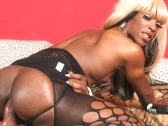 Ebony in Ebony Rides Her Dildo - BlackTGirls