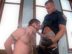 BoundGods : The Toe Tapper
