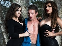 Alexander & Madison Montag & Jessy Dubai in TS Girls On Top Video