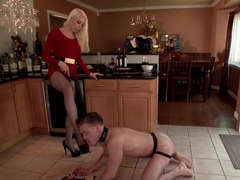 Fantasy Package: Domestic Servitude